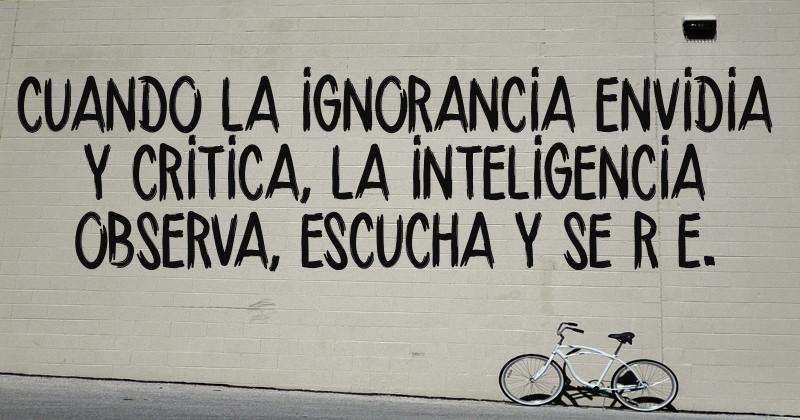 Cuando La Ignorancia Envidia Y Critica La Inteligencia